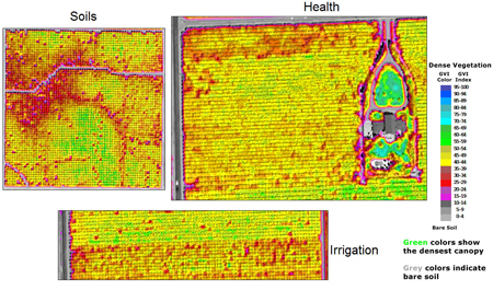 Agriculture Crop Management and Production Improved by Satellites and GIS