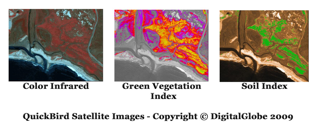 quickbird satellite image landcover vegetation soil index